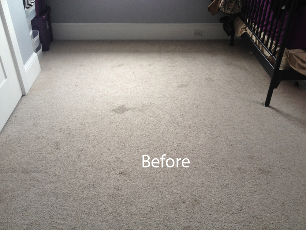 Milpitaswall2wallcarpetsteamcleaninga Milpitaswall2wallcarpetsteamcleaningb Bedroom Wall To Carpet Cleaning Milpitas A