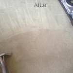 Milpitas-Carpet-Cleaning-Company