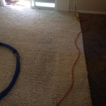 Milpitas-Traffic-Area-carpet-cleaners