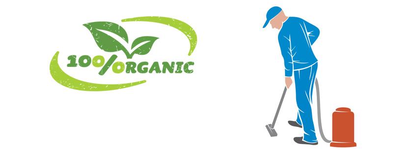 Carpet Cleaning Milpitas Organic Carpet Cleaning Service